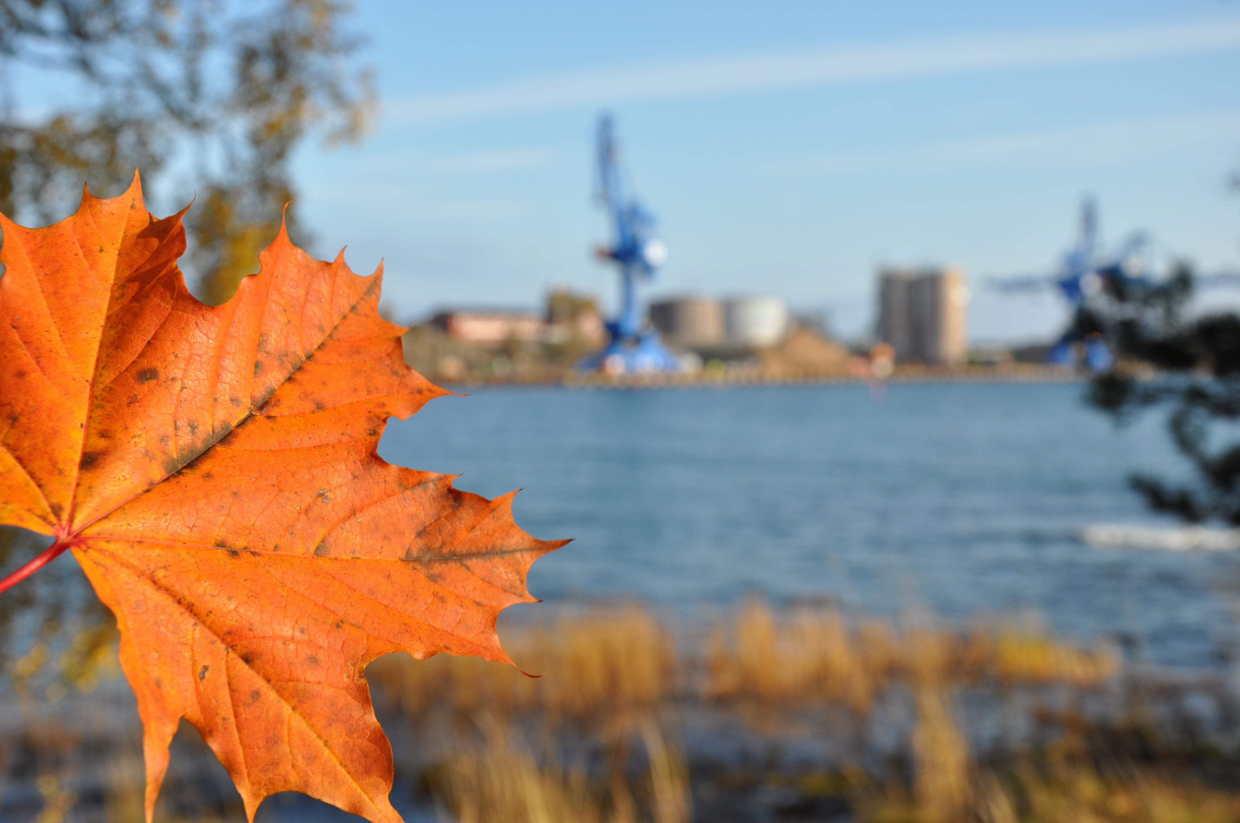 Mitt Sörmland - Höst vid hamnen