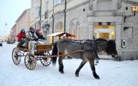Häst och vagn i snön på julmarknaden i Arboga