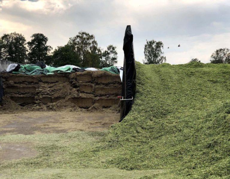 Den senaste skörden av spannmål till höger och de tidigare vallskördarna till vänster.